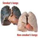 smokelung